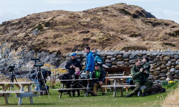 Høstens program i NOF Møre og Romsdal byr på tre fellesturer til Maletangen i Fræna, Makkevika i Giske og Ona i Sandøy kommune. Bildet er fra en fantastisk fellestur til Ona tidligere i år. Foto: Steinar Melby