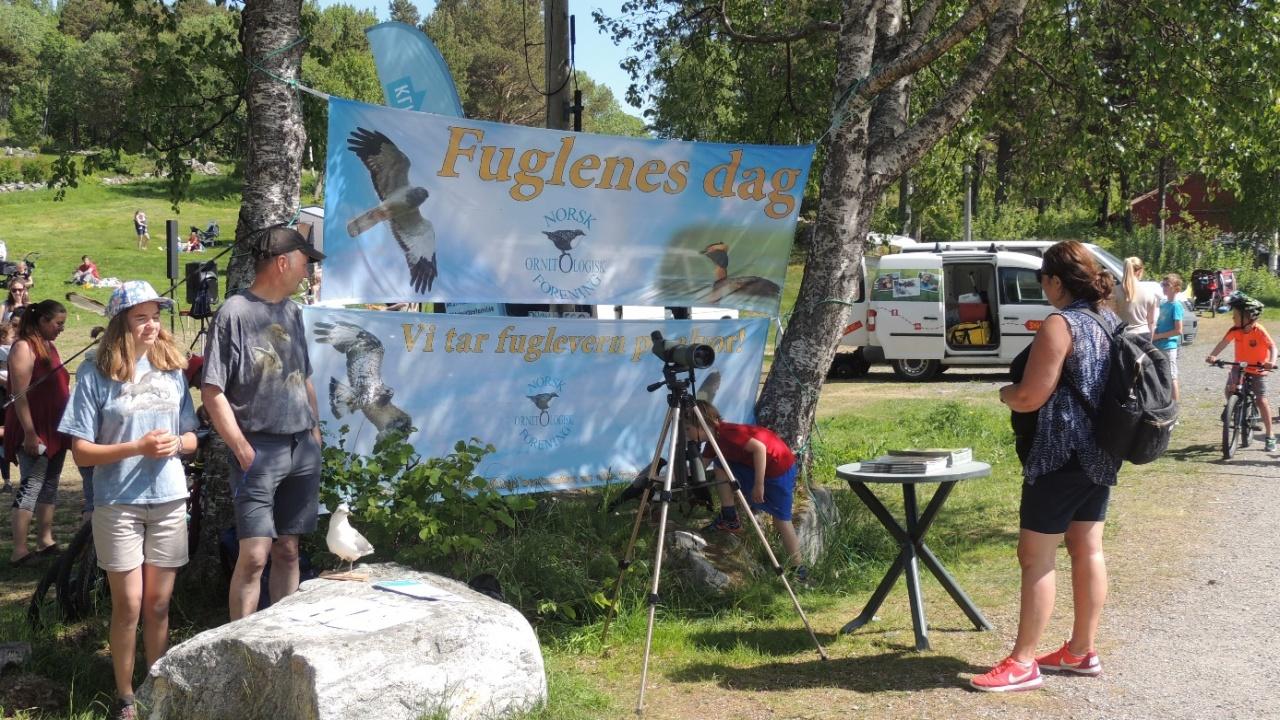 F.v Rakel og Rune Karlstad bidro  med konkurranse og kunnskap om de lokale måkeartene. Foto : Olbjørn Kvernberg